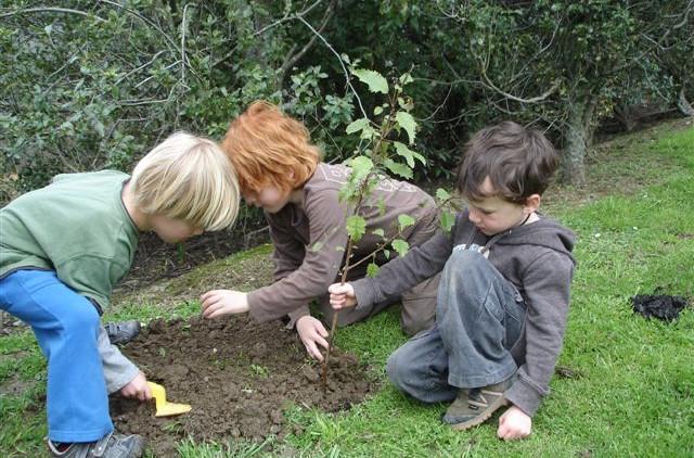 Tree planting Hira 019.jpg