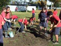 Ebbett Park School