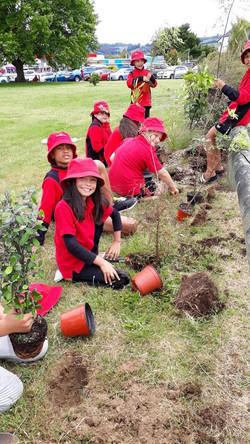 Taupo School 2 - 2020