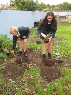 Tree planting 4.6.14 001
