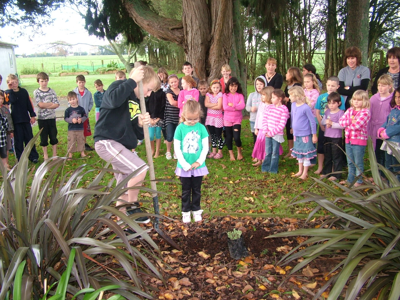 Tree planting with Mayor