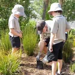 Waiheke Primary School 1 - 2020