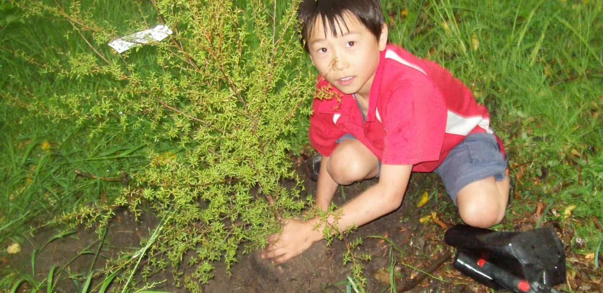 haruka treeplanting.jpg