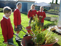TIS enviro group sets off to plant our paper4tree seedlings