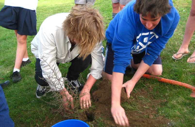 Tree planting 16 Oct 2015 (19).JPG