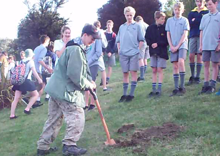 Tree_planting_1.png