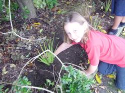 Tree planting 007
