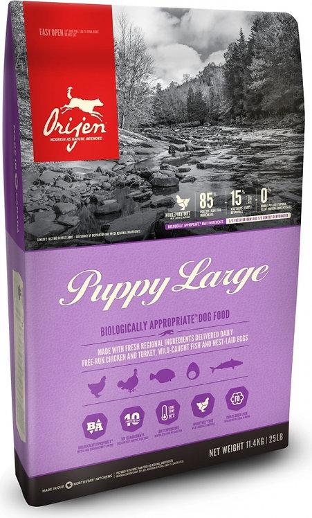 Orijen Puppy large/chiot Large 11,4 kg