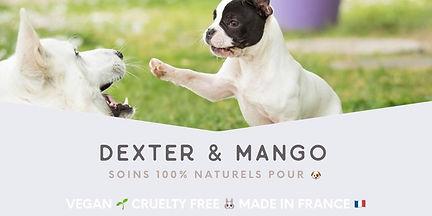 dexter & mango.jpg