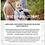 Thumbnail: e-book - Naming Ceremony Kit