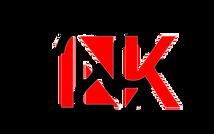 219INK_logo2.png
