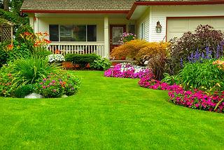 nice-lawn.jpeg