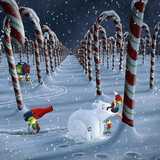 Emergency in the candy canes field