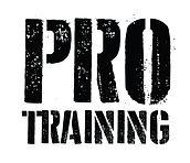 perrie pro training logo_edited.jpg