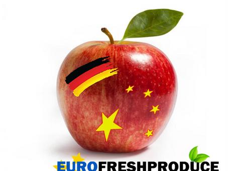Wirtschaftskrieg USA–China: Kann der Deutsche Apfel nun den chinesischen Markt in Angriff nehmen?