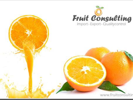 西班牙柑橘业希望抓住中美经济纠纷带来的机遇