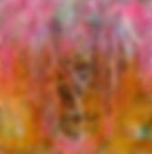 Fuchsia Heat_edited.jpg