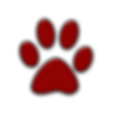 016697-simple-red-glossy-icon-animals-an