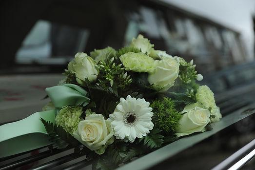 flowers-4839339_1920.jpg