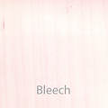 BleechTxT.png