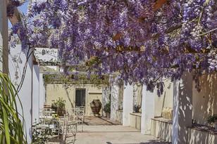 Giardino-Casa-Cuseni-web--(8).jpg