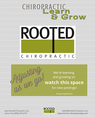 Chiropractic Learn & Grow.png