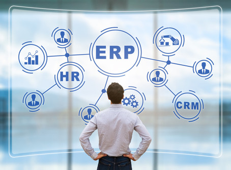 ERP REDUX: SERIES OVERVIEW