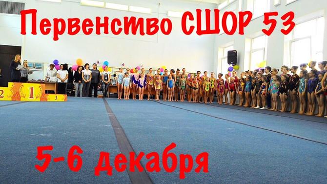 Первенство Спортивной школы по спортивной акробатике.