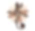 logo_kuljaesol_01.png