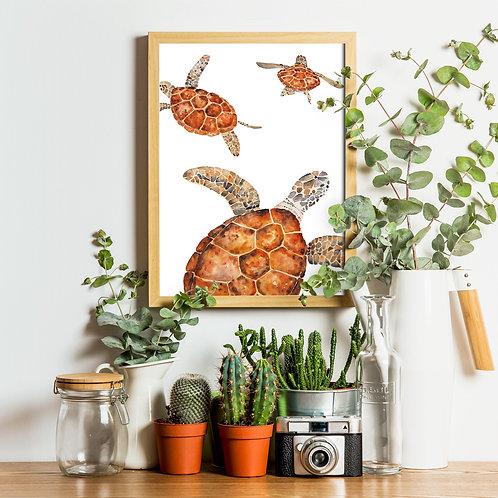 Art Print - Turtle