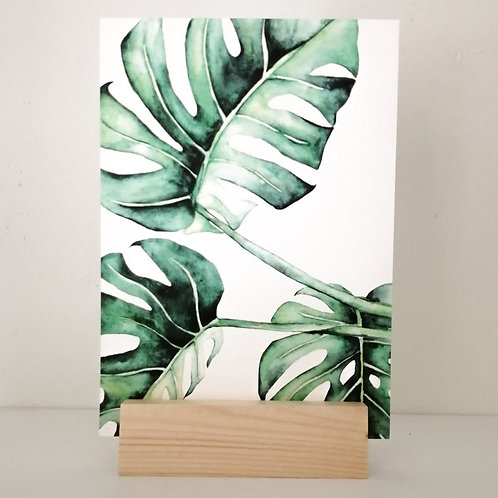 Art Print - Monstera