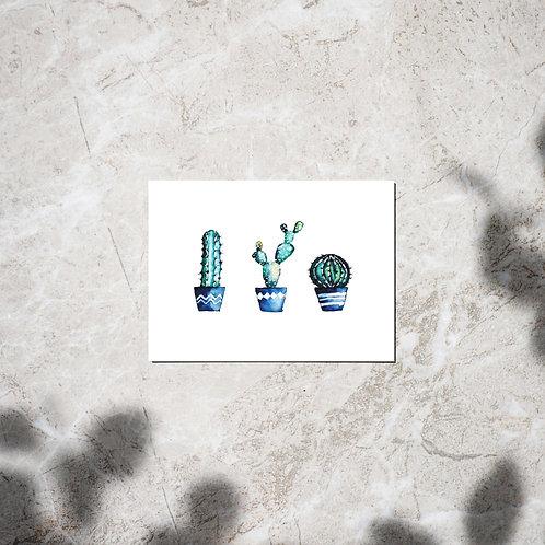 Ansichtkaart 'Cacti'