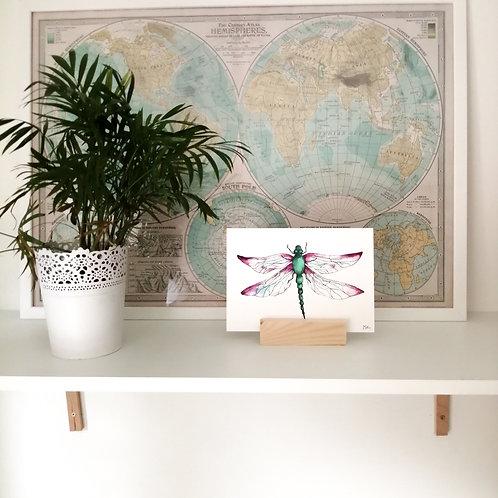 Art Print - Dragonfly