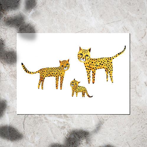 Ansichtkaart met cheetahs