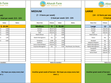 Week 13 Bag Packing List and Extras