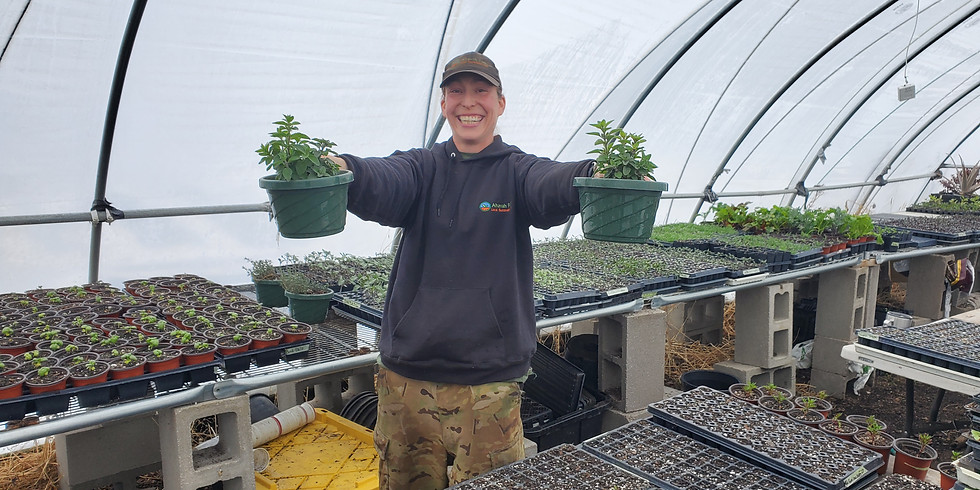 Seed Starting and Nursery Management 101 – By Lorin Mattemore