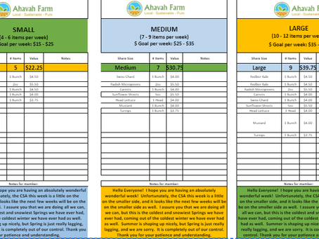 Spring Week 5 Bag Packing List and Extras