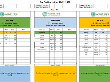 Week 7 Bag Packing List and Extras