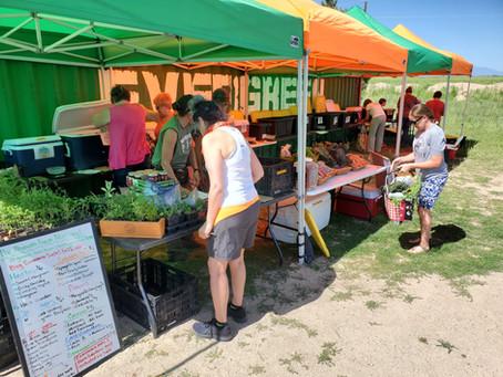 Ahavah Farm Community News, July 20th 2021