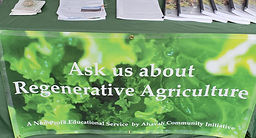 regenerative booth cropped.jpg