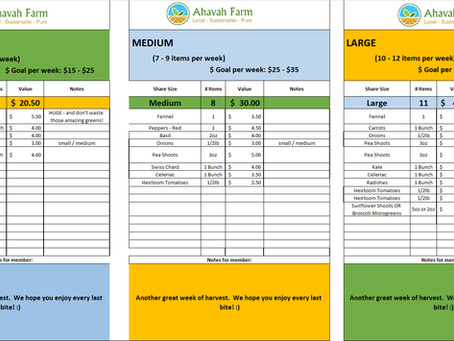 Week 14 Bag Packing List and Extras