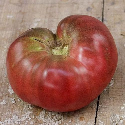 Tomatoes - Black Krim Seedling