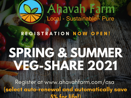 LIMITED SPOTS NOW OPEN (only 25)!  Join Our Community Veggie-Share Program (CSA)!
