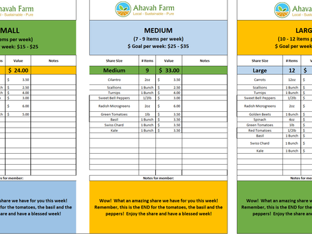 Week 2 Bag Packing List and Extras