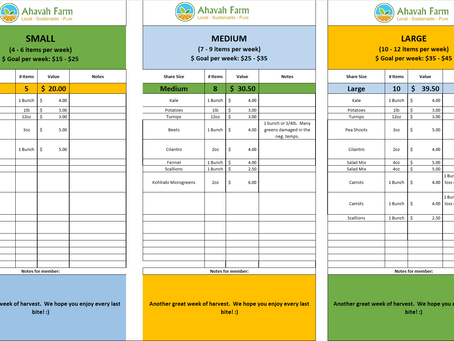 Week 6 Bag Packing List and Extras