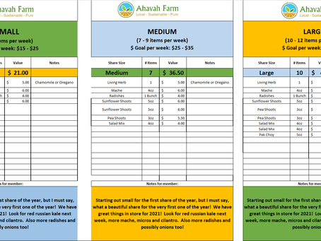 Winter Week 1 Bag Packing List and Extras