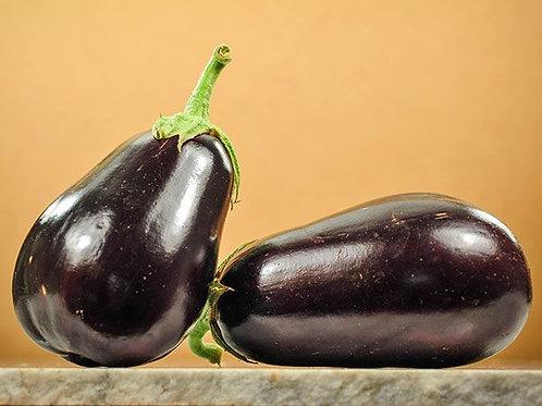 Eggplant - Black Beauty Eggplant Seedling