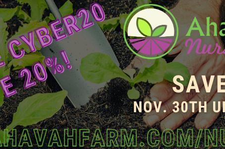 Ahavah Farm Nursery GRAND OPENING! Save 20% Until December 6th!