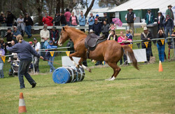 Henty 2014 Fiona & Annie Liberty jumping
