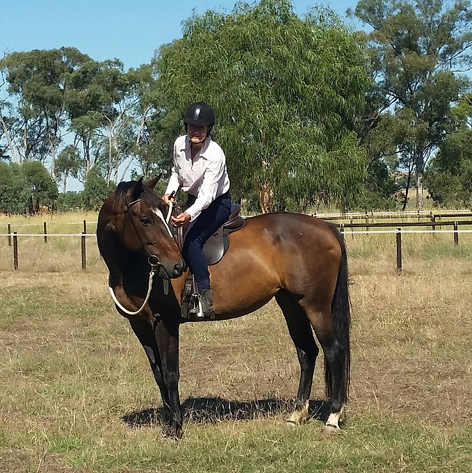 Fiona with Taci ridden checking in.jpg